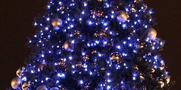 Luminaires | Minleon USA - RGB+ Decorative Strings