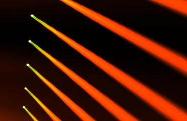 For Creatives - wysiwyg Lighting Design – CAST Software