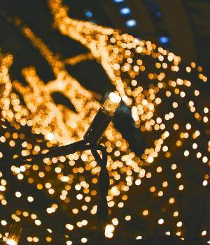 Firefly Fairy Lights