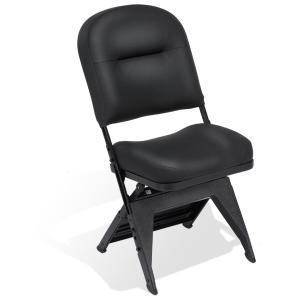 VIP Chair