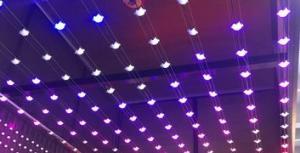 Luminaires | Minleon USA - 24 Vdc Architectural Domes